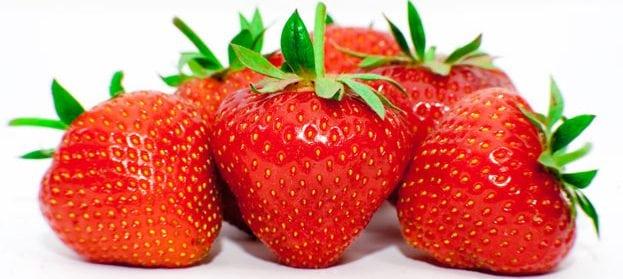 que plantar en marzo fresas