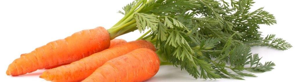 que plantar en marzo zanahorias