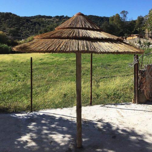 sombrillas-junco-africano