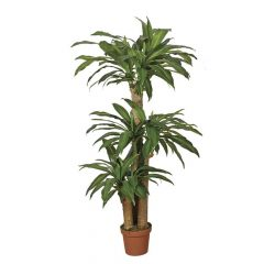planta-artificial-dracena-145-cm-74010006