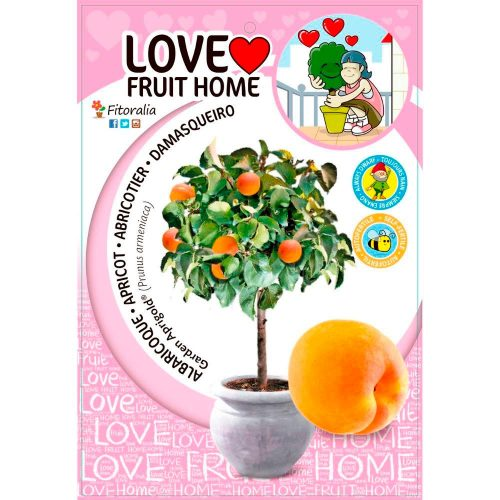 albaricoquero-enano-garden-aprigold-5l-prunus-armeniaca-1