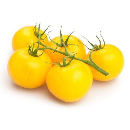 maceta-tomate-amarillo-gran-sol-105-cm-gama-tradicional