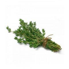 planton-de-tomillo-comun-6-uds-gama-tradicional